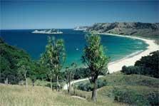 Anaura Bay Scenic Reserve