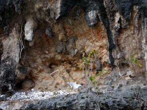 Lugares históricos de Kokas