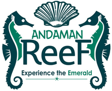 Andaman Reef Travels