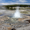 Anemone Geyser - Yellowstone - USA