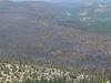 Angora Peak