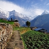 Annapurna Mountain From Village