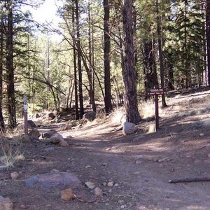 Another View Of Brookbank Trail