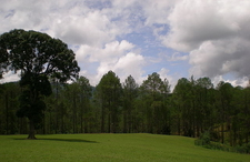 Another View Of Ranikhet