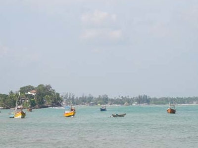 Another View Of  Taprobane Island