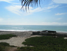 Another View To Capistrano Beach