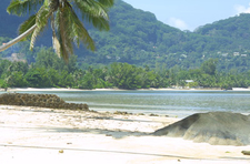 Anse Aux Pins And Turtle Bay