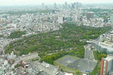 Aoyama Cemetery Viewed From Roppongi Hills