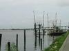 Apalachicolabay Original