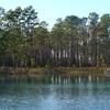 Apalachicola Pond