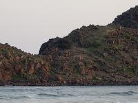 Appikonda
