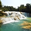 Agua Azul Waterfall In Chiapas