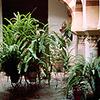 Arabic Baths Of Santa Maria