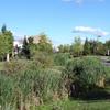 Arbor Creek Linear Park