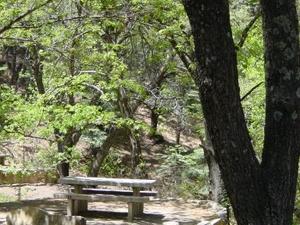 Arcadia Campground