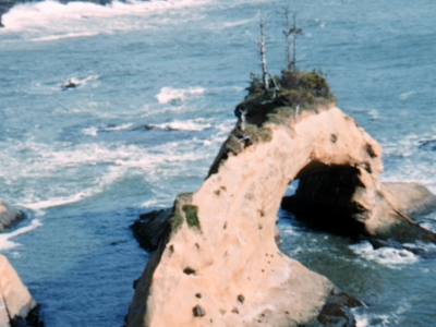 Arch Rock At  Depoe  Bay
