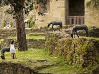 Arezzo, a tour of the town