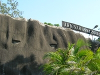 Arignar Anna Zoologial Parque
