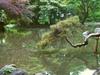 Pond Of Arisugawa-no-miya Memorial Park