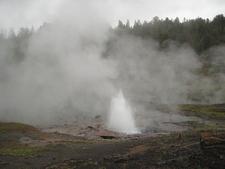 Artesia Geyser - Yellowstone - USA