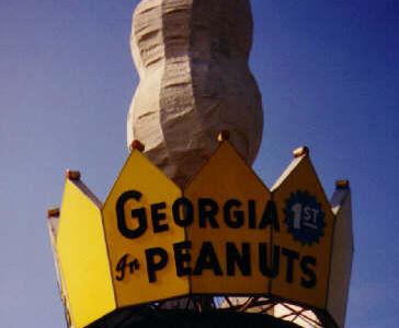 Ashburn Peanut