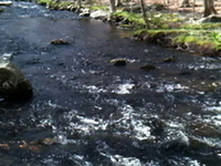 Aspetuck River