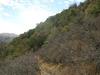 Atascosa Trail
