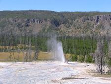 Atomizer Geyser - Yellowstone - USA