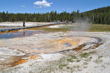 Aurum Geyser - Yellowstone - USA