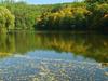Autumn Marian Valley