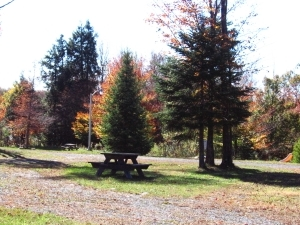 Autumn Moon Campground