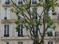 Avenue des Ternes