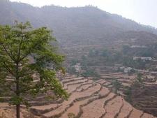 A View Of Ranikhet
