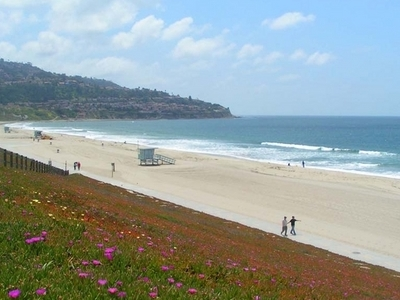 A View Of Torrence City Beach