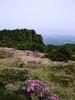 A View On The Gwaneumsa Trail