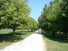 A Walking Path In EP Sawyer State Park
