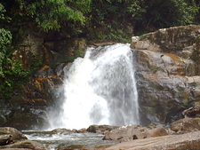 A Waterfall In Sinharaja Forest Reserve