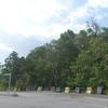 Ayer Hitam Forest Reserve