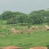 Aarth Kunj Park