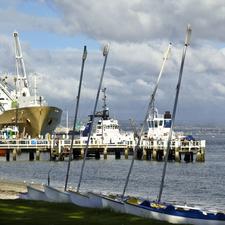 Abaconda Port Of Tauranga