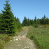 The Reitstieg Path On The Acker