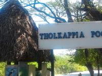 Tholkappia Poonga