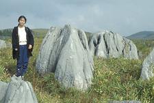 Karst Pinnacles