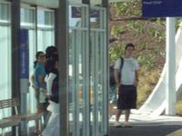 Sunnynook Busway Estação