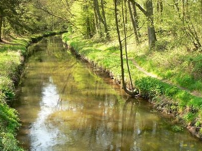 The Aller Canal