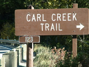 Carl Creek Trail