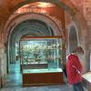 Museum Showcases