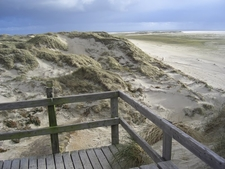 Sand Dunes And Beach On Amrum