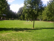 An Open Area In Glebe Park
