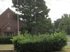 Anshei Sphard Cemetery